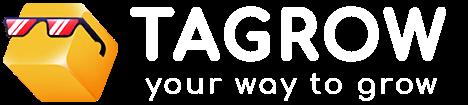 پیاده سازی رابط کاربری و وردپرس سایت تگرو